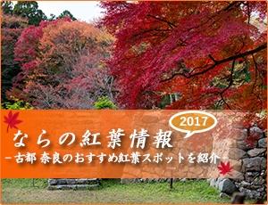 ならの紅葉情報2017