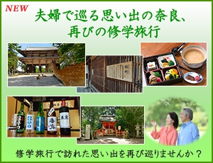 夫婦で巡る思い出の奈良、再びの修学旅行
