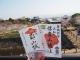 「奈良の城・信貴山城と郡山城をたずねて」を追加しました
